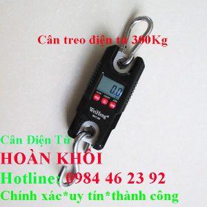can-treo-dien-tu-300kg-can-treo-dien-tu-hoan-khoi