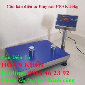 can-ban-dien-tu-thuy-san-peak-30kg