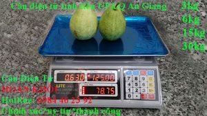 can-dien-tu-tinh-tien-upa-q-3kg-6kg-15kg-30kg-an-giang