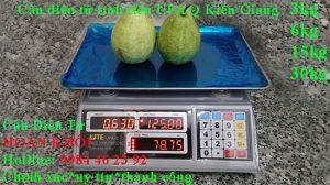 can-dien-tu-tinh-tien-upa-q-3kg-6kg-15kg-30kg-kien-giang